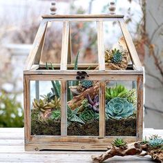 rustic wooden greenhouse is a good container for a small succulent indoor garden