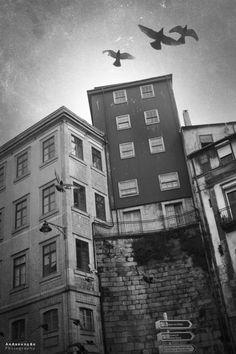 Oporto city, Portugal, may 2012    AnAssunção'photography