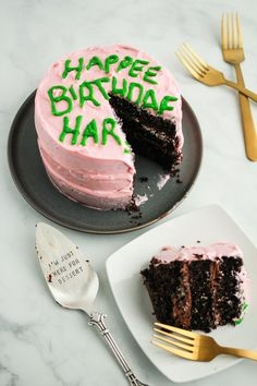 In honor of this beloved character's birthday, we recreated this Harry Potter birthday cake Hagrid gave Harry in first film. Harry Potter Desserts, Bolo Harry Potter, Harry Potter Birthday Cake, Harry Potter Food, Harry Potter Halloween, Hery Potter, Harry Potter Christmas Decorations, Movie Cakes, Cake Recipes