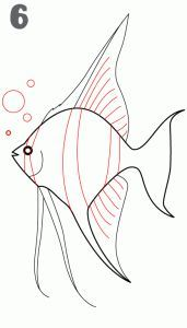 Image Result For Angelfish Coloring Pages Free