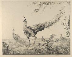 Peacocks Edward Julius Detmold  (British, London 1883–1957 Montgomery, Wales) Date: ca. 1924 Medium: Etching and drypoint