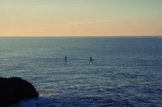 ✳ New free photo at Avopix.com - water ocean sea     ➡ https://avopix.com/photo/23311-water-ocean-sea    #water #ocean #sea #shore #paddle boarding #avopix #free #photos #public #domain