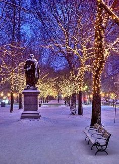 Christmas in New York - Central Park