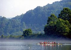 Top 5 Summer Activities In Oak Ridge Tn Tennessee Vacation Park Kayaking