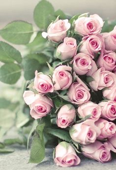 pretty bouquet of pink roses