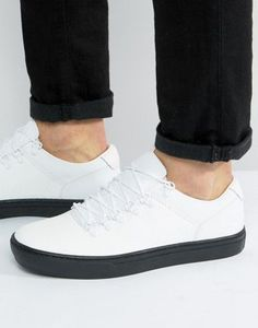 Shop Timberland Adventure Cupsole Alpine Trainers at ASOS. Timberland Sneakers, Men's Sneakers, White Timberlands, Asos, Nike Sb, Best Brand, Lacoste, Real Leather, Jelly Beans