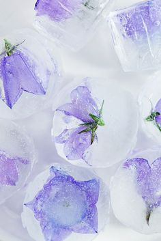 Floral ice cubes.