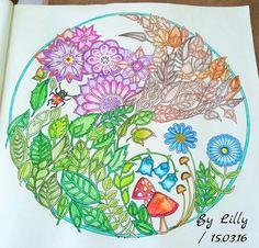 Floresta encantada  Floresta encantada folhas e flores  Floresta encantada cogumelos  Jardim secreto  #florestaencantadatopmais  johanna basford