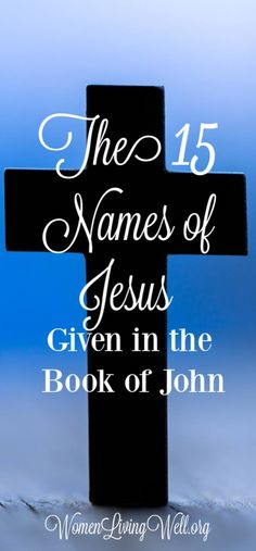 In the Gospel of John we see Jesus in a way we don't see Him in any of the other three gospels. Here are 15 names of Jesus we see in the book of John. Christian Faith, Christian Quotes, Christian Living, Jesus Quotes, Bible Quotes, Names Of God, Jesus Names, Unanswered Prayers, Bibel Journal