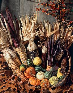 SuperStock - Close-up of Indian corn and pumpkins in a basket