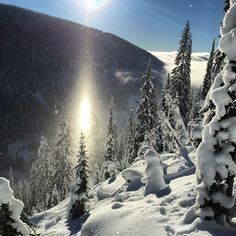I dream of hitting backcountry powder...