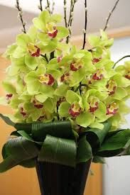 Image result for corporate flower arrangements london