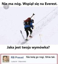 wszystkie memy z neta :v # Humor # amreading # books # wattpad Very Funny Memes, Bad Memes, Wtf Funny, Funny Lyrics, Polish Memes, Really Funny Pictures, Weekend Humor, Funny Mems, Nyan Cat