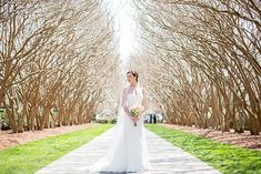 Ashley's Dallas Arboretum Bridals | Dallas Wedding Photographer ...