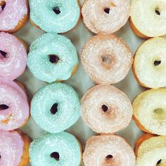 TBT to and these pastel mini donuts. Fresh Donuts available now. Cute Donuts, Mini Donuts, Doughnuts, Delicious Donuts, Yummy Food, California Donuts, Yummy Treats, Sweet Treats, Pastel Photography