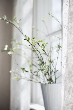 47 Flower Arrangements For Spring Home Décor - DigsDigs White Flowers, Beautiful Flowers, Spring Branch, Fresh Farmhouse, White Farmhouse, Decoration Inspiration, Deco Floral, White Cottage, Shades Of White