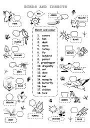 BIRDS AND INSECTS 1 List Of Insects, Insects Names, Vocabulary Worksheets, Esl, Butterflies, Preschool, Birds, Pictures, Photos