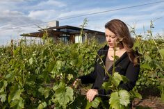 Take a vineyard trip inspired by wine accolades in Oregon's northern Willamette Valley.