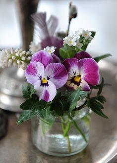 ♔ Simply flower arrangement in jar - pansies, ivy and primulas.