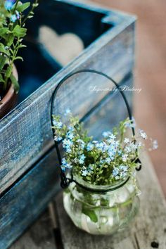How to arrange those tiny flowers Shabby Flowers, Beautiful Flowers, Tiny Flowers, Forget Me Not Blue, Simple Pleasures, Container Gardening, Flower Power, Floral Arrangements, Pots
