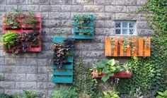 13 Pallet Vertical Garden for Beautifying you Home | Pallet Furniture DIY
