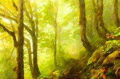 I uploaded new artwork to fineartamerica.com! - 'Beautiful Forest With Fog Between Trees' - http://fineartamerica.com/featured/beautiful-forest-with-fog-between-trees-lanjee-chee.html via @fineartamerica