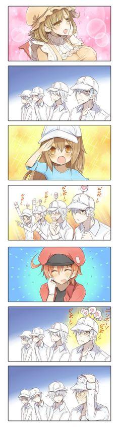 White Blood Cell Reactions [Hataraku Saibou] Okay. Anime Meme, Otaku Anime, Manga Anime, Anime Kawaii, Chibi, Fan Art Anime, Familia Anime, White Blood Cells, Cute Comics