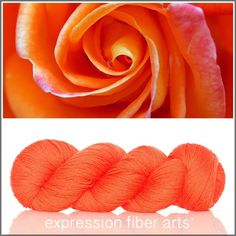 Expression Fiber Arts, Inc. - ORANGE ROSE - 'SOCKLOVE' Limited Edition SOCK YARN, $24.00 (http://www.expressionfiberarts.com/products/orange-rose-socklove-limited-edition-sock-yarn.html)