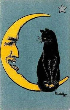 Great conversation by the man in the moon and Black Cat