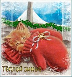 Christmas - kitten in a mitten Christmas Is Coming, Christmas And New Year, All Things Christmas, Christmas Fun, Gif Pictures, Winter Pictures, Cute Pictures, Gif Greetings, Xmas Gif