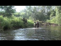 How to Read Trout Streams for better Fly Fishing with Orvis' Tom Rosenbauer Part 1 - YouTube