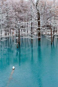 Blue Pond - Hokkaido, Japan