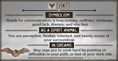Spirit Animal: Definition and List of Totem Animals Spiritual Meaning, Spiritual Path, Spiritual Gifts, Animal Meanings, Animal Symbolism, Bat Animal, Power Animal, Dream Symbols, Spiritual Animal