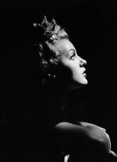 Light and Shadow: Lana Turner (Film Noir Photos) Hollywood Fashion, Hollywood Actor, Golden Age Of Hollywood, Vintage Hollywood, Hollywood Glamour, Hollywood Actresses, Classic Hollywood, Hollywood Party, Lana Turner