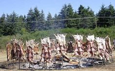 Lamb Henge - Saturna Island Lamb BBQ Lamb, Vineyard, Bbq, Canada, Island, Summer, Outdoor, Barbecue, Outdoors