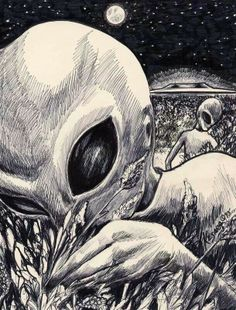 Different Types of Alien Beings Types Of Aliens, Aliens And Ufos, Ancient Aliens, Alien Drawings, Art Drawings, Alien Aesthetic, Grey Alien, Alien Tattoo, Backgrounds
