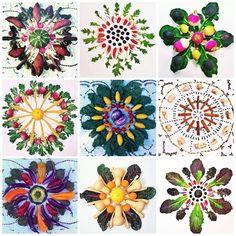 food Mandalas - Yahoo Image Search Results