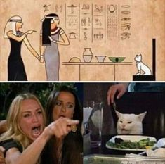 Because every Meme Joke and Story originated in Egypt Funny True Quotes, Stupid Funny Memes, Funny Relatable Memes, Funny Posts, Hilarious, Cat Memes, Dankest Memes, Memes Da Internet, English Jokes