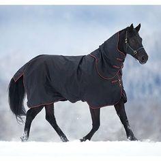 "Horseware Ireland - Amigo 1200D Plus Med - Thyme-Thy-665'6"" by Horseware. $180.00. Horseware Ireland - Amigo 1200D Plus Med - Thyme-Thy-665'6"". Save 10%!"