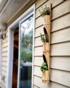 Vertical bamboo herb planter by DIYlivingwalls on Etsy