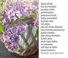 Kirjoitin kauneimman runoni iltaruskoon meren vaahtoon linnunlennon vanaan. Vain sinä ymmärsit sen. Ja tulit. (Maaria Leinonen) Finnish Words, Wise Words, Plants, Word Of Wisdom, Plant, Planets, Famous Quotes