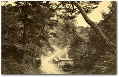 THE TOKAIDO,BETWEEN YOKOHAMA AND FUJISAWA - Google 検索