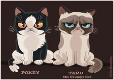 Erin hunting illustration meow grumpy cat cartoon, grumpy ca Grumpy Cat Cartoon, Grumpy Kitty, Cat Cartoons, Kitty Cats, Bad Kitty, Crazy Cat Lady, Crazy Cats, You Draw, Cat Design