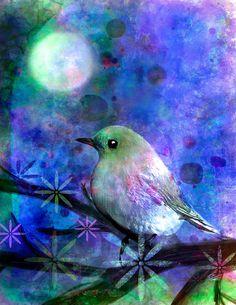 Robin Mead   Midnight Oasas Fine Art Print