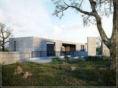 CGarchitect - Professional 3D Architectural Visualization User Community | iwasa house