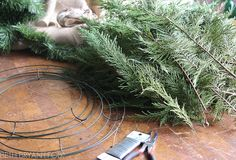 Detailed instructions on how to make your own evergreen wreaths