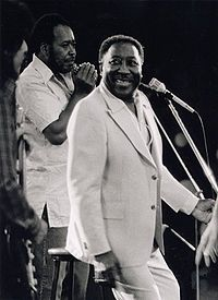 McKinley Morganfield /Muddy Waters