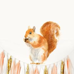 Red Squirrel wall decal. Non PVC fabric wall decal from our Watercolor Woodland collection. Chocovenyl wall stickers are removable and reusable many times. Adorable Red Squirrel beautifully drawn in translucent watercolor in traditional technique. The qualities of original painting and