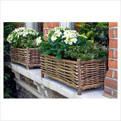 Willow Basket Window Boxes!