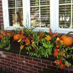 Fall Window Box - mix real and artificial greenery with mini pumpkins - Home And Garden